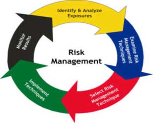 Risk Management in Software Development